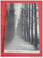 BASSE WAVRE  -   Belle Voie   -  1914  - - Wavre