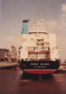 """SAINT-NAZAIRE  -  Cliché Du Bateau De Commerce """" RENEE DELMAS """" Dans Le Port - Cargo  -  Voir Description     -   ¤¤ - Saint Nazaire"""