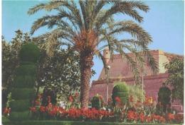 JARDINES DEL PASEO MARITIMO - Palma De Mallorca
