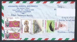 Sunflower.Sonnenblume. Stamp De Moçambique Com Dupla Taxa. Stamp Mozambique With Double Rate. Dugeng. Conus Mormoreus.2s - Mozambique