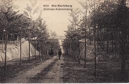 ANTWERPEN ST MARIABURG KATTENSBERG CAVALIERS  1923 - Belgium