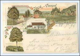 U5643/ Gruß Aus Den Vogesen Forsthaus Gutenbrunnen Litho AK 1898 Elsaß - Elsass
