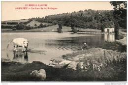 21. Saulieu. Le Lac De La Bologne - Saulieu