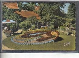 Carte Postale 61. Alençon  La Roseraie Très Beau Plan - Alencon