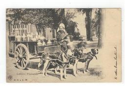 Laitière Flamande  Melkkar Met Honden 1906 H.N. à A. 35 - Folklore