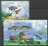 S982 2011 UNION DES COMORES FISH & MARINE LIFE LES POISSONS 1KB+1BL MNH - Vie Marine
