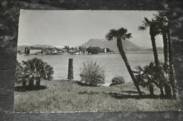 6353     ISOLA BELLA VISTA DA STRESA BORROMEO - 1960 - Altre Città