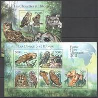 S997 2011 UNION DES COMORES FAUNA BIRDS OWLS LES CHOUETTES ET HIBOUX 1KB+1BL MNH - Hiboux & Chouettes