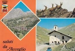 9407-SALUTI DA ACCEGLIO(CUNEO)-FG - Saluti Da.../ Gruss Aus...