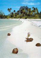 1 AK Atoll Bora Bora * Am Strand Von Bora Bora - Französisch Polynesien - French Polynesia * - French Polynesia