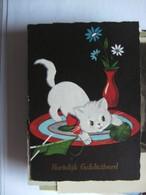Chat White Cat Katze - Geklede Dieren