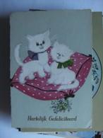 Chats White Cats Katzen - Geklede Dieren