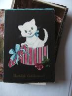 Chat White Cat Katze Black Background - Geklede Dieren