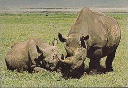 """Kenia  - East Afrika  - Rhinoceros -  Nashorn - 3x Nice Stamps """"Butterflies"""" - Kenia"""