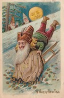 NEW YEAR ; Dwarf On Sled , Gold Coins , 1907 - New Year