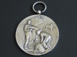 Médaille En Argent - Société D'agriculture Des Hautes Alpes  **** EN ACHAT IMMEDIAT **** - Professionals / Firms