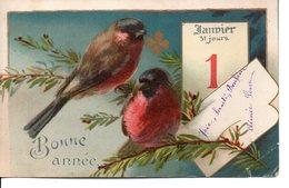 Illustrée . Oiseaux , Calendrier - Nouvel An