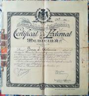 SCHOOL DIPLOMA, PRACTIONER DOCTOR CERTIFICATE, BRANCOVEANU TRUSTEE ESTABLISHMENTS, 1931, ROMANIA - Diploma & School Reports