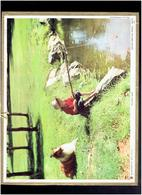 CALENDRIER 1973 ENFANT PECHEUR AVEC CHIEN ALMANACH DES P.T.T. - Calendriers