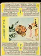 CALENDRIER 1974 ENFANT ET CHAT ALMANACH DES P.T.T. - Calendriers