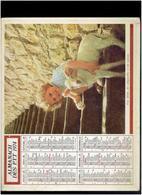 CALENDRIER 1974 CHIEN FILLETTE PAQUERETTES ET AGNEAU ALMANACH DES P.T.T. - Calendriers