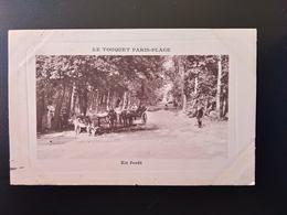 CPA.(62) LE TOUQUET.PARIS PLAGE.  En Forêt.  (G.bis 167) - Le Touquet