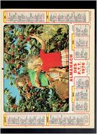 CALENDRIER 1976 ENFANTS CUEILLANT DES CERISES OISEAUX DES ILES ALMANACH DES P.T.T. - Calendriers