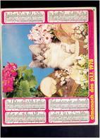 CALENDRIER 1978 CHIEN CHAT ALMANACH DES P.T.T. - Calendriers