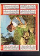 CALENDRIER 1978 FILLETTE CANARD CHAVAUX ALMANACH DES P.T.T. - Calendriers
