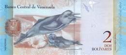 2 Bolivares Venezuela  2013 UNC - Venezuela