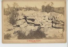 FONTAINEBLEAU - La Roche Qui Pleure - Franchart - Cliché Sur Support Cartonné Format Hors Tout  16,5X10,8 CM - Fontainebleau