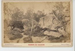 FONTAINEBLEAU - Rochers Du Calvaire - Cliché Sur Support Cartonné Format Hors Tout  16,5X10,8 CM - Fontainebleau
