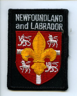 Ecusson Blason Patch Feutre NEWFOUNDLAND And LABRADOR - Ecussons Tissu