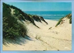 Hourtin (33) Plage Les Dunes 2scans - Autres Communes
