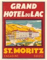 "D9301 ""GRAND HOTEL DU LAC - ST. MORITZ - SUISSE - ENGADINE "" ETICHETTA ORIGINALE, 1930 - Adesivi Di Alberghi"