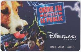 FRANCE C-613 Passport Disneyland Paris - Used - France