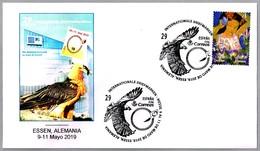 QUEBRANTAHUESOS - Gypaetus Barbatus - Bearded Vulture. Correos España En Essen (Alemania) 2019 - Afstempelingen & Vlagstempels
