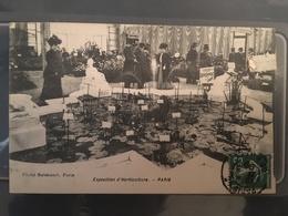 Ancienne Carte Postale - Exposition D'horticulture Paris - Expositions
