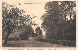 Saint-Sauveur NA2: Mont Doyelle - Frasnes-lez-Anvaing