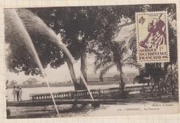 9AL1459 AFRIQUE OCCIDENTALE GUINEE  CONAKRY LA FONTAINE  2 SCANS - Guinée Française