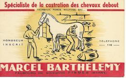 51 FISMES Avis De Passage 9 X 13  Marcel BARTHELEMY Spécialiste De La Castration Des Chevaux Debout  Très Rare - Fismes