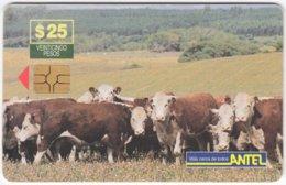 URUGUAY A-266 Chip Antel - Animal, Cow - Used - Uruguay