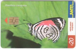 URUGUAY A-272 Chip Antel - Animal, Butterfly - Used - Uruguay