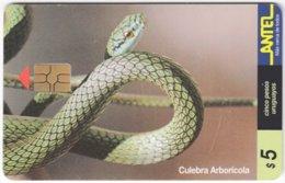 URUGUAY A-283 Chip Antel - Animal, Snake - Used - Uruguay