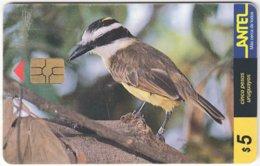 URUGUAY A-299 Chip Antel - Animal, Bird - Used - Uruguay