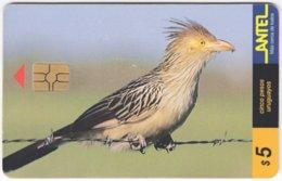 URUGUAY A-302 Chip Antel - Animal, Bird - Used - Uruguay