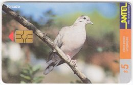 URUGUAY A-306 Chip Antel - Animal, Bird - Used - Uruguay