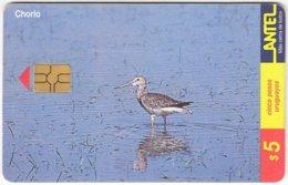 URUGUAY A-312 Chip Antel - Animal, Bird - Used - Uruguay