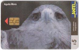 URUGUAY A-317 Chip Antel - Animal, Bird, Eagle - Used - Uruguay