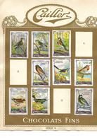Images Chocolat Cailler 17  Poissons Et Oiseaux.. Séries  9 Et 10. Collées Sur Feuille Album.. Envoi 1,72 €. - Autres